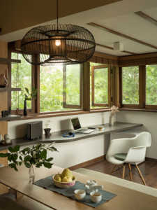 Tree-House-news